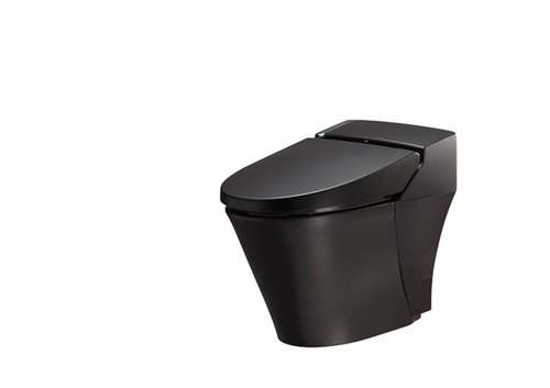 限定ブラックのトイレ、かっこいい