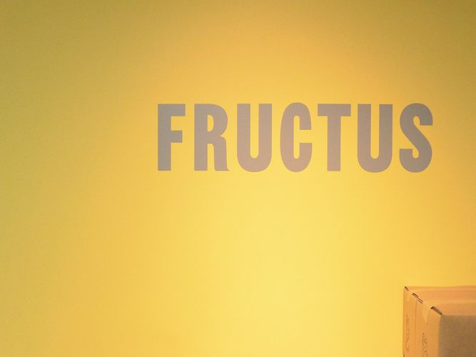 FRUCTUS-MATSUYAGINZA_14-05-11_11-55-43_000