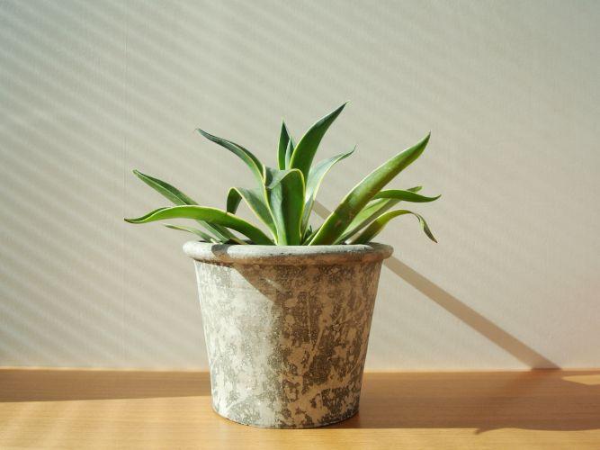 serax-flowerpot_006