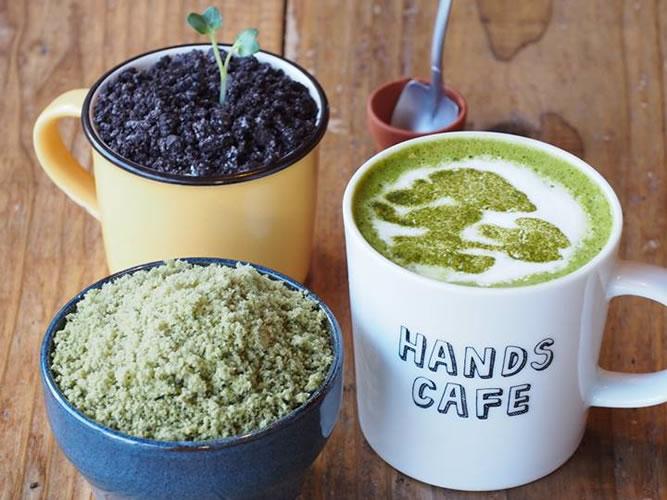 渋谷に「盆栽カフェ」出現