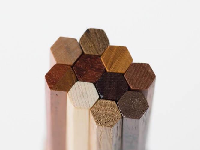 10種の「樹木鉛筆」…20年ぶり復活