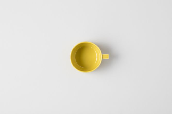HASAMI_mustard_004