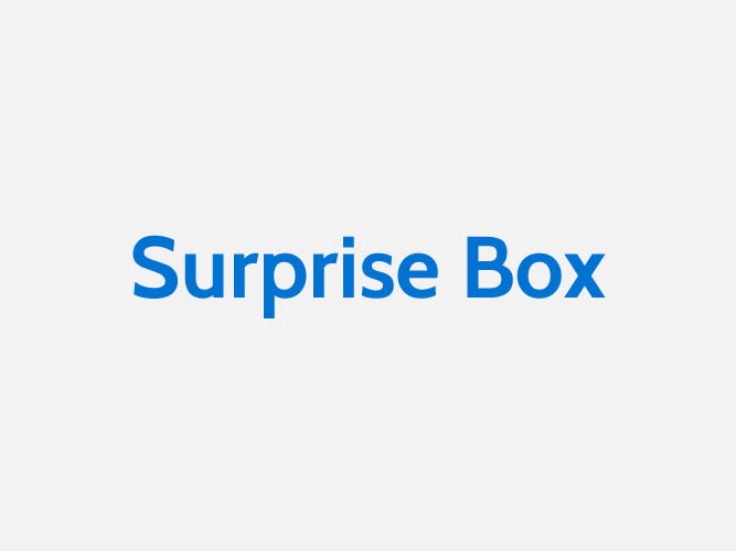 MoMA-STORE_Surprise Box