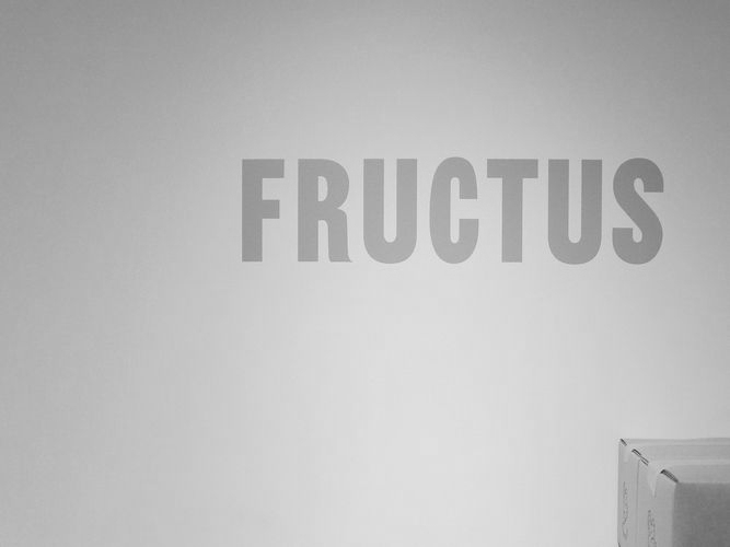 fructus-matsuyaginza_close_001