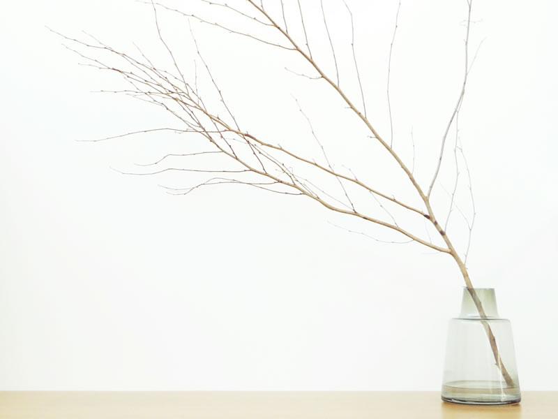 Holmegaard flora_001