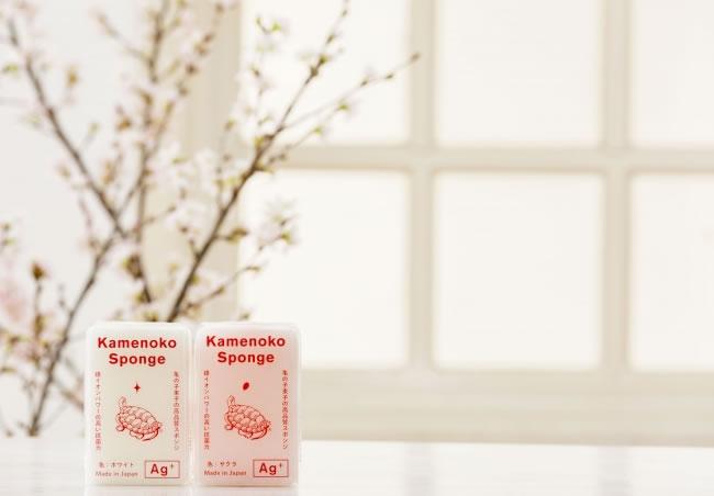 Kamenoko sponse_sakura_001