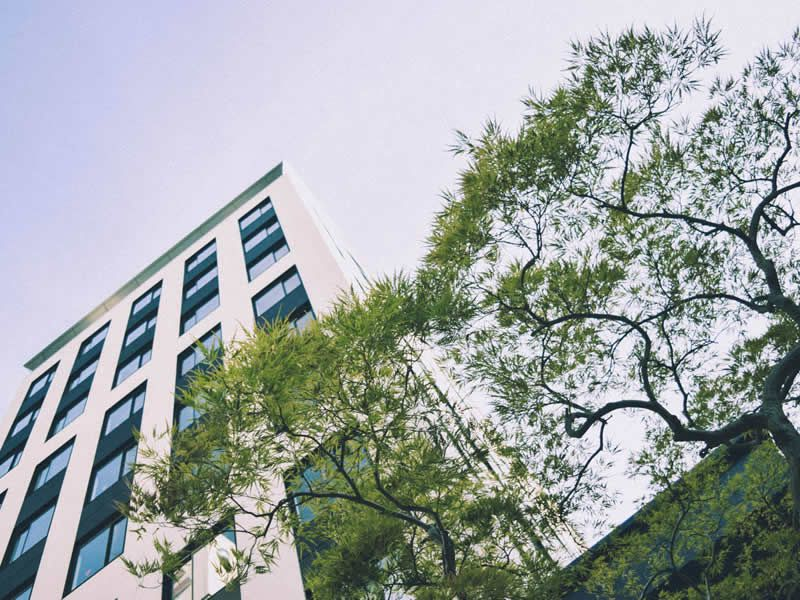 NOHGA HOTEL UENO_002