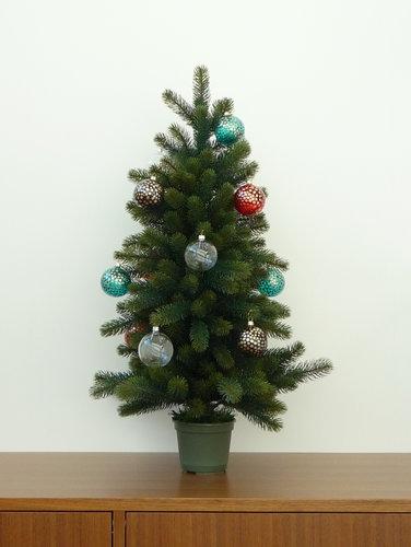 クリスマスツリー2010 007