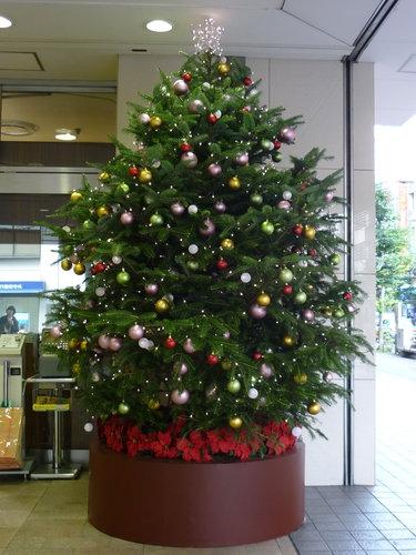 街で見かけた素敵なクリスマスツリーベスト3_1
