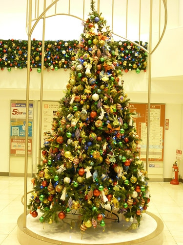街で見かけた素敵なクリスマスツリーベスト3_7