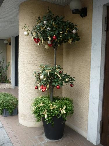 街で見かけた素敵なクリスマスツリーベスト3_9