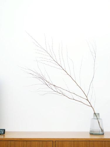 flora 001 1